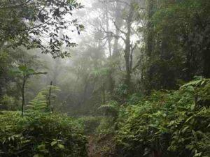 national park Costa Rica cerro chato