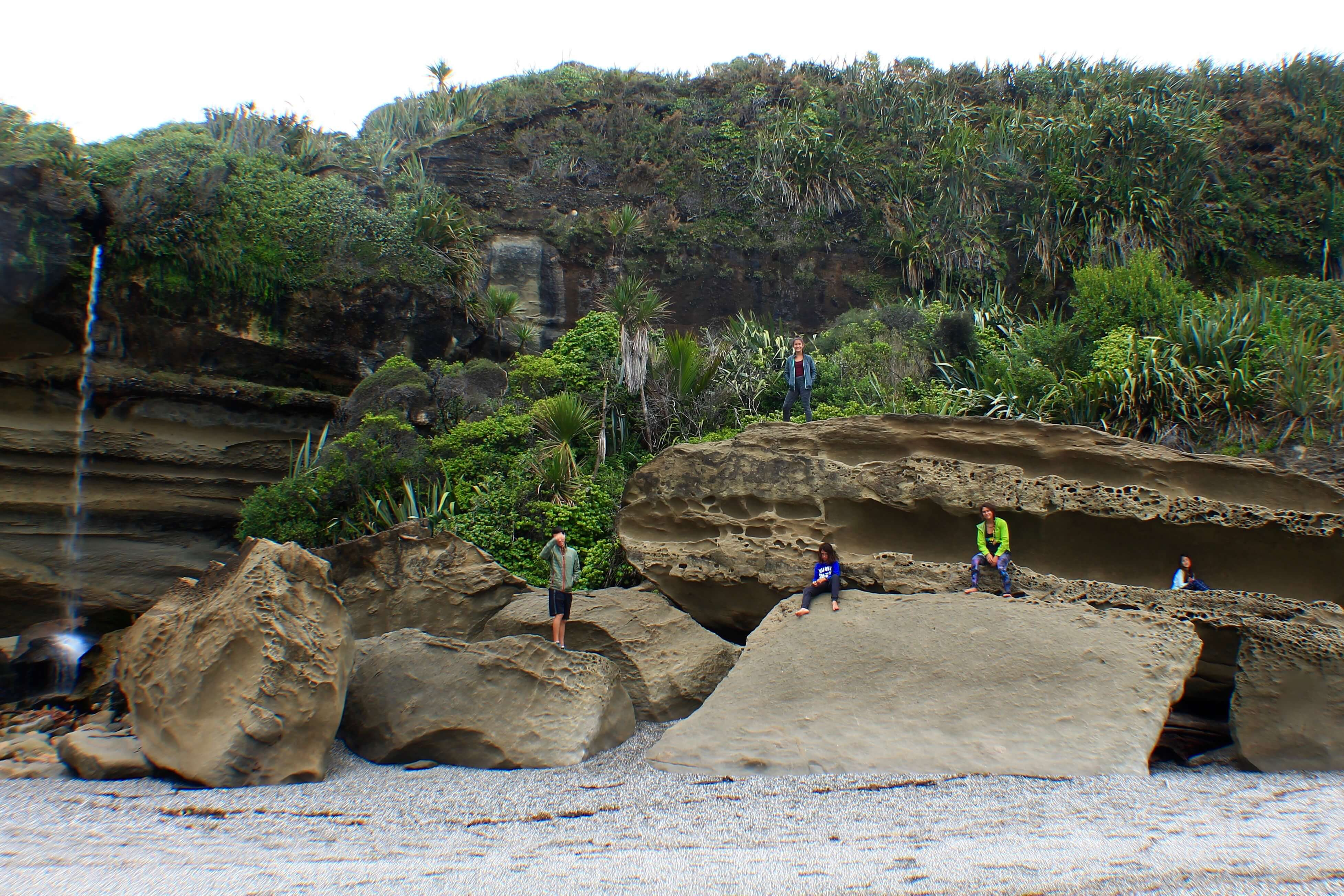 Truman Track, 7 Things to do on the West Coast, New Zealand