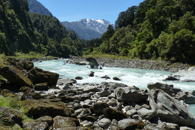 Copland Track, 7 Things to do on the West Coast, New Zealand