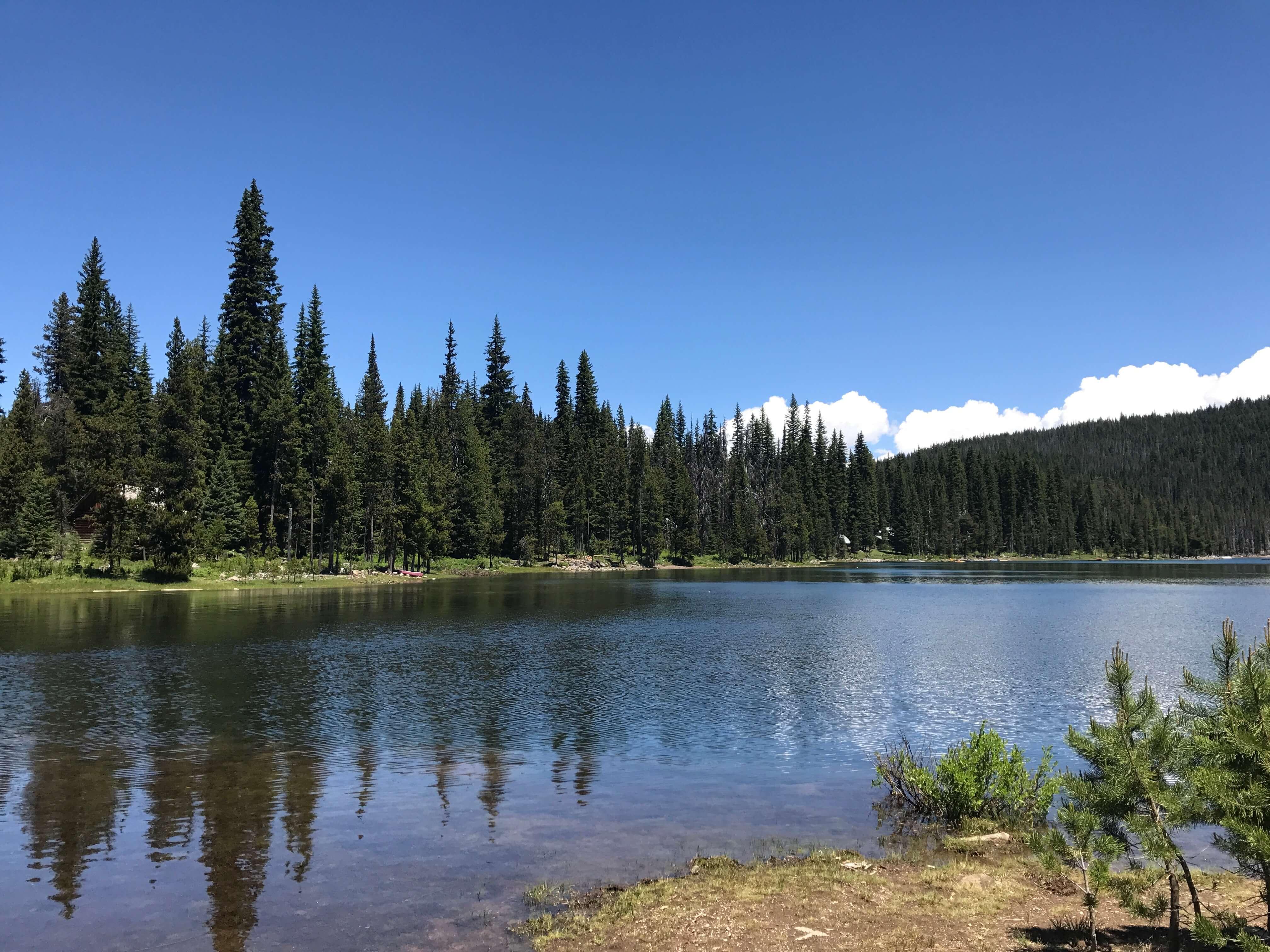 Best Oregon Campgrounds- Cascade highway